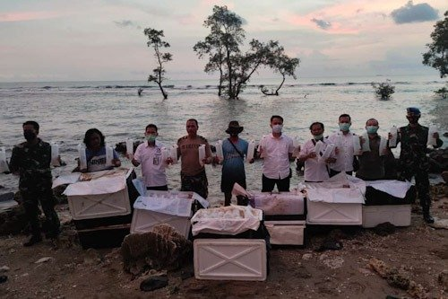 77.971 Baby Lobster Diamankan Polda Banten