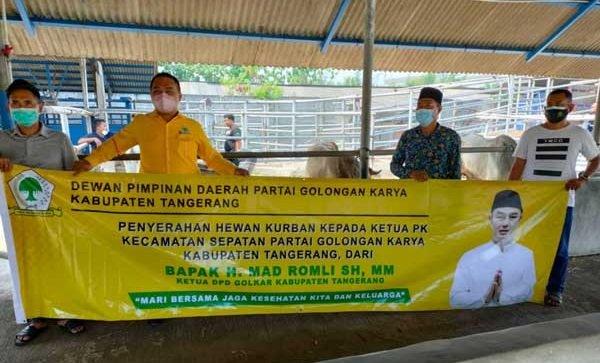 Golkar Tangerang Kurban 29 Sapi