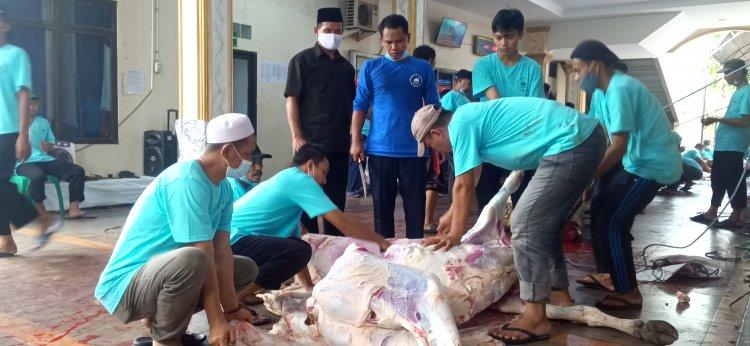 Kurban 44 Ekor Sapi dan 58 Kambing di Tengah Pandemi